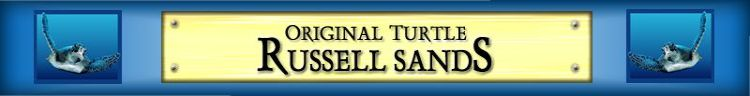 Learn The Secrets Of The Original Turtle Trading System Taught By Russell Sands